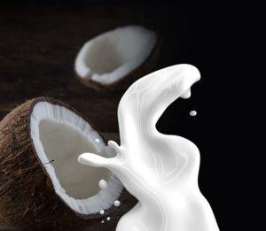 Wybór mleka kokosowego przez internet